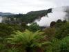 Rotorua_smoke_1